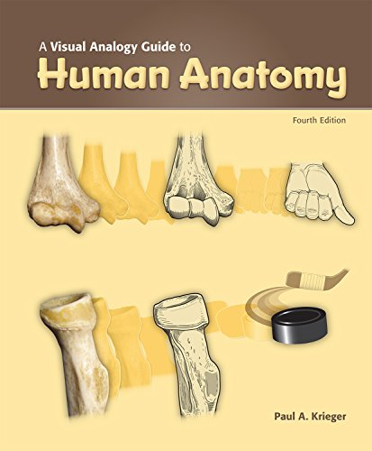 VISUAL ANALOGY GUIDE TO HUMAN ANATOMY   N/A 9781617316241 Front Cover