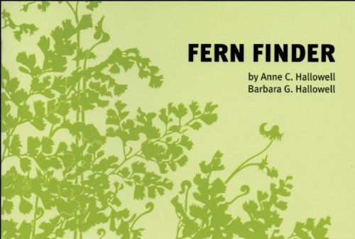Fern Finder A Guide to Native Ferns of Central and Northeastern United States and Eastern Canada 2nd 2001 (Revised) edition cover
