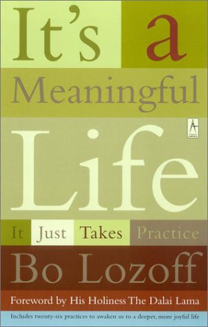 It's a Meaningful Life It Just Takes Practice N/A edition cover