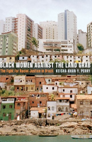 Black Women Against the Land Grab The Fight for Racial Justice in Brazil  2013 edition cover