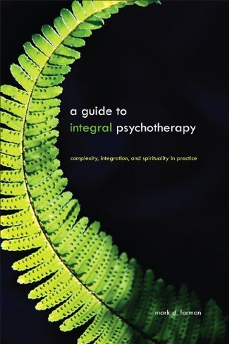 Guide to Integral Psychotherapy Complexity, Integration, and Spirituality in Practice  2010 edition cover