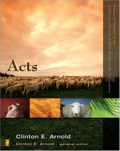 Acts   2002 9780310278252 Front Cover