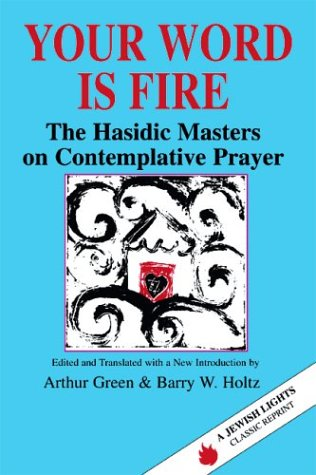 Your Word Is Fire The Hasidic Masters on Contemplative Prayer  1993 (Reprint) edition cover