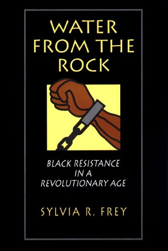 Water from the Rock Black Resistance in a Revolutionary Age  1991 edition cover