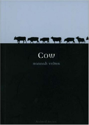 Cow   2007 edition cover
