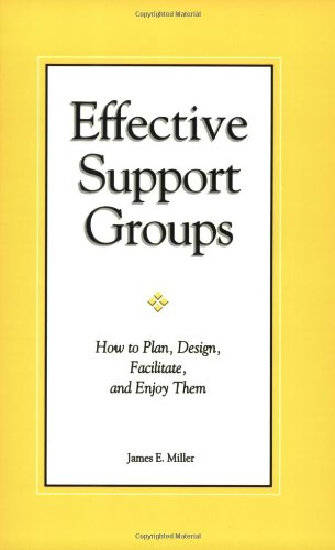 Effective Support Groups : How to Plan, Design, Facilitate, and Enjoy Them 1st 1998 edition cover