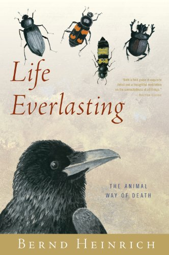 Life Everlasting The Animal Way of Death  2012 edition cover