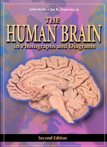 Human Brain in Photographs and Diagrams  2nd 2000 (Revised) edition cover