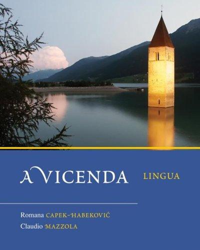 Vicenda Lingua  2009 edition cover