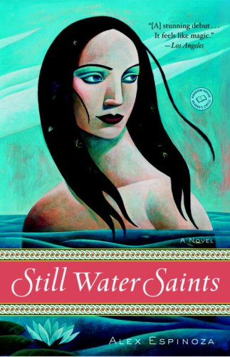 Still Water Saints A Novel N/A edition cover
