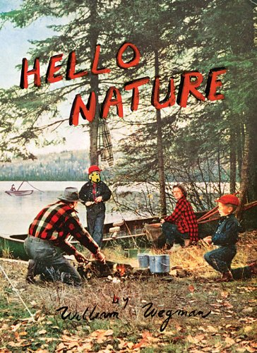Hello Nature How to Draw, Paint, Cook, and Find Your Way  2012 9783791352275 Front Cover