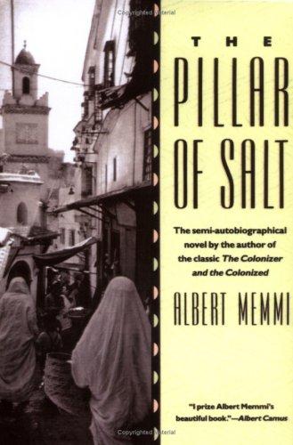 Pillar of Salt  1992 (Reprint) 9780807083277 Front Cover