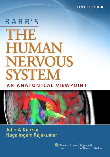 Human Nervous System An Anatomical Viewpoint 10th 2014 (Revised) edition cover