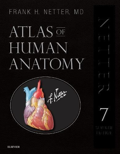 Atlas of Human Anatomy, Professional Edition Including NetterReference. com Access with Full Downloadable Image Bank 7th 2014 9780323554282 Front Cover