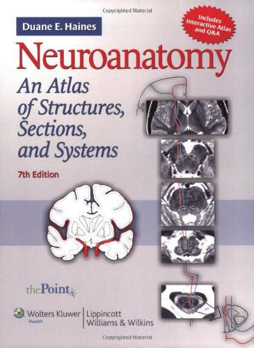 Neuroanatomy An Atlas of Structures, Sections, and Systems 7th 2008 (Revised) edition cover