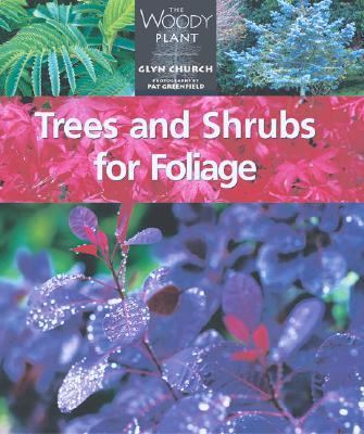 Trees and Shrubs for Foliage   2002 9781552976289 Front Cover