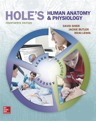 Hole's Human Anatomy and Physiology  14th 2016 9780078024290 Front Cover