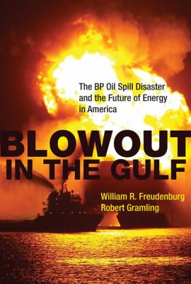 Blowout in the Gulf The BP Oil Spill Disaster and the Future of Energy in America  2012 edition cover