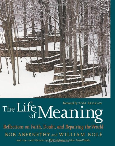 Life of Meaning Reflections on Faith, Doubt, and Repairing the World  2008 edition cover