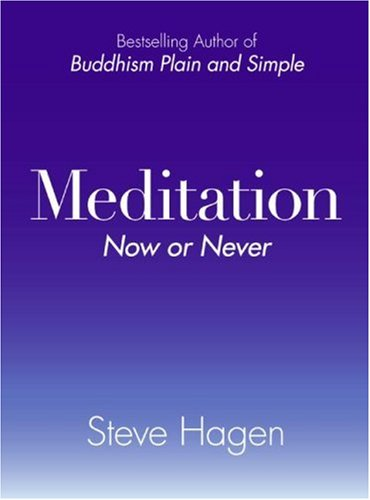 Meditation Now or Never   2007 edition cover