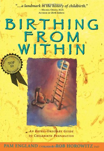 Birthing from Within An Extra-Ordinary Guide to Childbirth Preparation  1998 edition cover