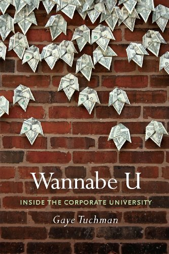 Wannabe U Inside the Corporate University N/A edition cover