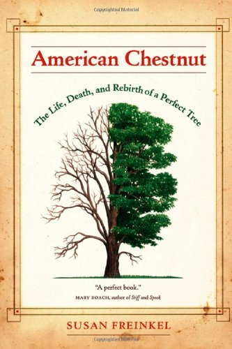 American Chestnut The Life, Death, and Rebirth of a Perfect Tree  2007 9780520247307 Front Cover