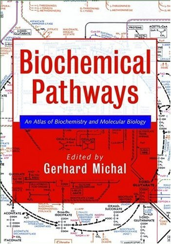 Biochemical Pathways An Atlas of Biochemistry and Molecular Biology  1999 9780471331308 Front Cover