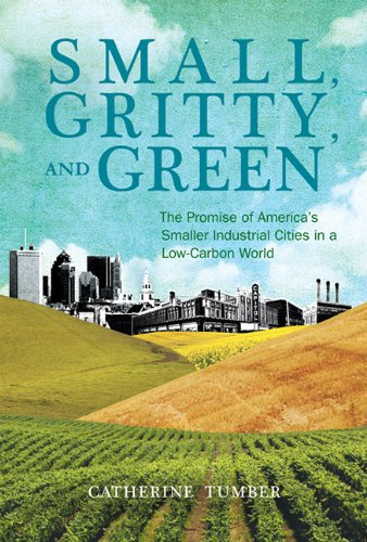 Small, Gritty, and Green The Promise of America's Smaller Industrial Cities in a Low-Carbon World  2011 9780262525312 Front Cover