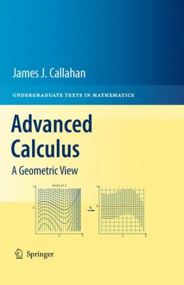 Advanced Calculus A Geometric View  2010 edition cover