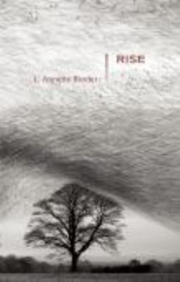 Rise Stories N/A edition cover