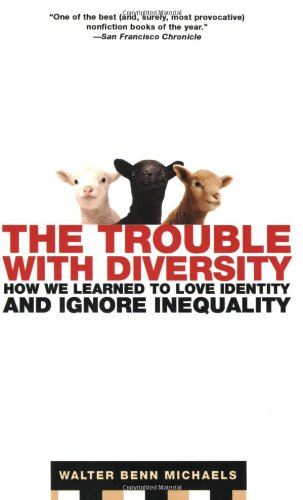 Trouble with Diversity How We Learned to Love Identity and Ignore Inequality N/A edition cover