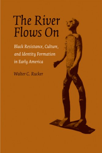 River Flows On Black Resistance, Culture, and Identity Formation in Early America N/A edition cover
