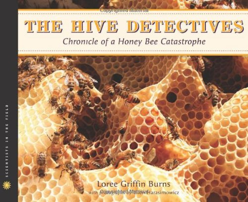 Hive Detectives Chronicle of a Honey Bee Catastrophe  2010 9780547152318 Front Cover