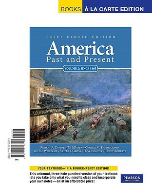 America Past and Present  8th 2011 (Brief Edition) 9780205792320 Front Cover