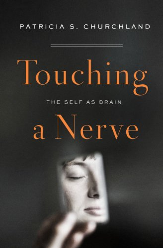 Touching a Nerve The Self as Brain  2013 edition cover