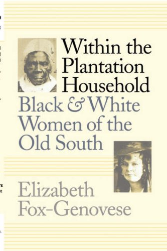 Within the Plantation Household Black and White Women of the Old South  1988 edition cover