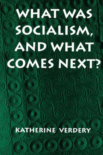 What Was Socialism, and What Comes Next?   1996 edition cover