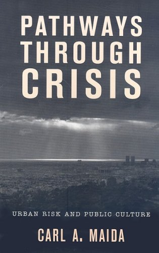 Pathways Through Crisis Urban Risk and Public Culture  2008 9780759111325 Front Cover