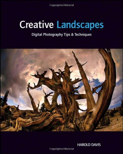 Creative Landscapes Digital Photography Tips and Techniques  2011 9781118027325 Front Cover