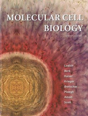 Molecular Cell Biology  7th 2013 edition cover