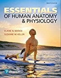 Essentials of Human Anatomy & Physiology:   2017 9780134395326 Front Cover