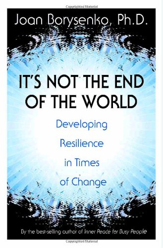 It's Not the End of the World Developing Resilience in Times of Change  2009 edition cover