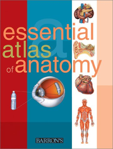 Essential Atlas of Anatomy   2001 9780764118333 Front Cover