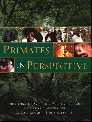 Primates in Perspective   2006 edition cover