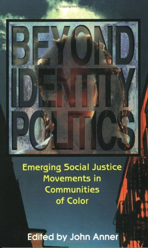 Beyond Identity Politics Emerging Social Justice Movements in Communities of Color N/A edition cover