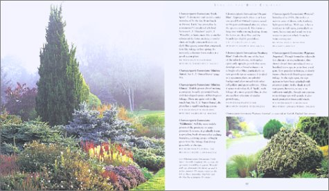 Gardening with Conifers   2002 edition cover
