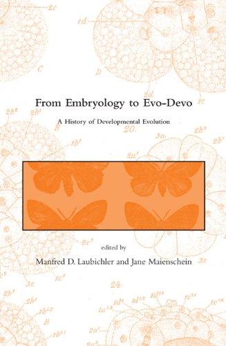 From Embryology to Evo-Devo A History of Developmental Evolution  2007 9780262513340 Front Cover