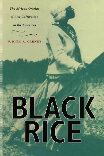 Black Rice The African Origins of Rice Cultivation in the Americas  2001 (Reprint) edition cover