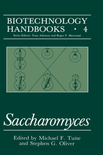 Saccharomyces   1991 9780306436345 Front Cover